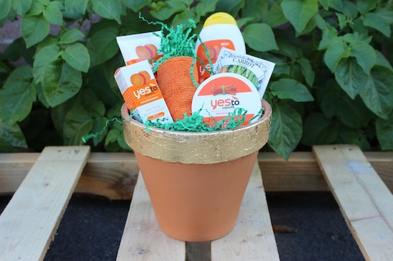Easter hostess gift yes to carrots hey tracy regimen into my hand and it dawned on me that it would make the perfect easter gift this pot of goodness is the perfect present for any bunny special negle